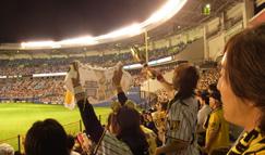 人生ほぼ初。プロ野球みてきた(阪神戦)。
