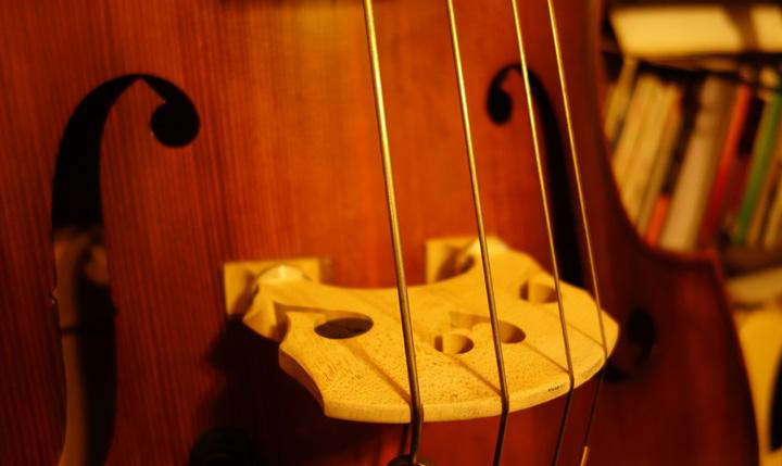 ウッドベースの弦